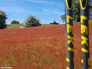War Mamorial Ampthill Park
