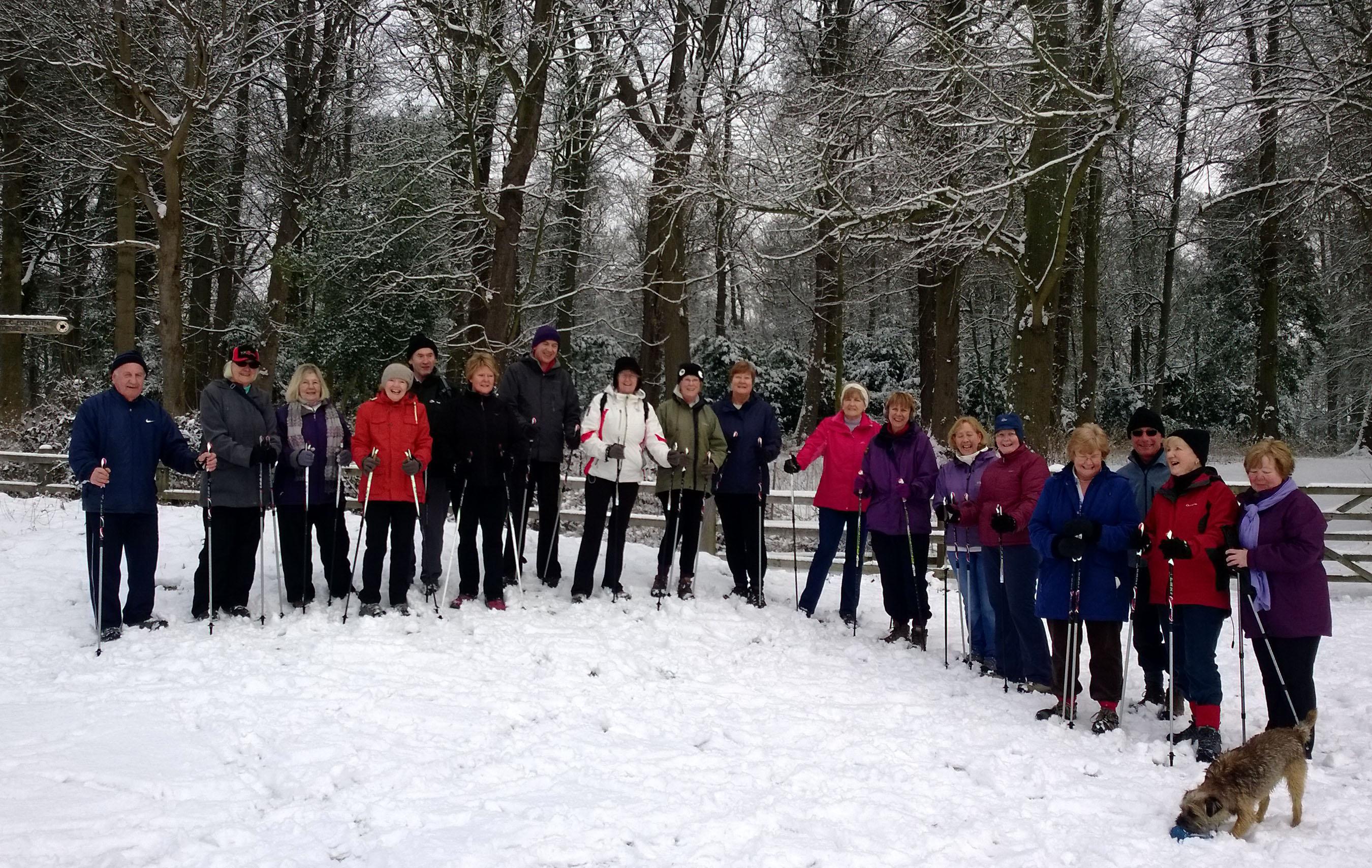 snow-2015.jpg